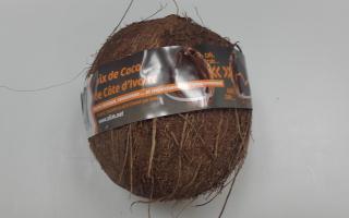 NOIX DE COCO cote d ivoire cat 1