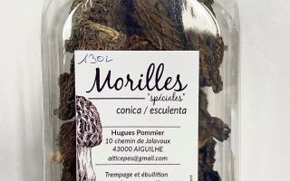 MORILLES seche import 50 grs