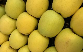 Pomme Golden GROSSE pltx 1 rang COLIS 4.38kg x 1.83€