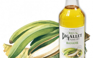 Sirop de Banane Bigallet (1l)