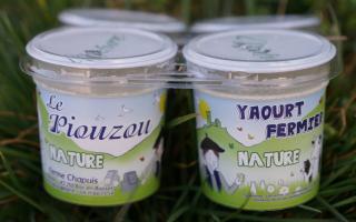 Yaourt piouzou nature (4x125gr)